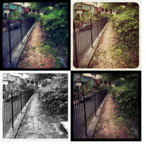 Four versions of the same photo using different filtering effects